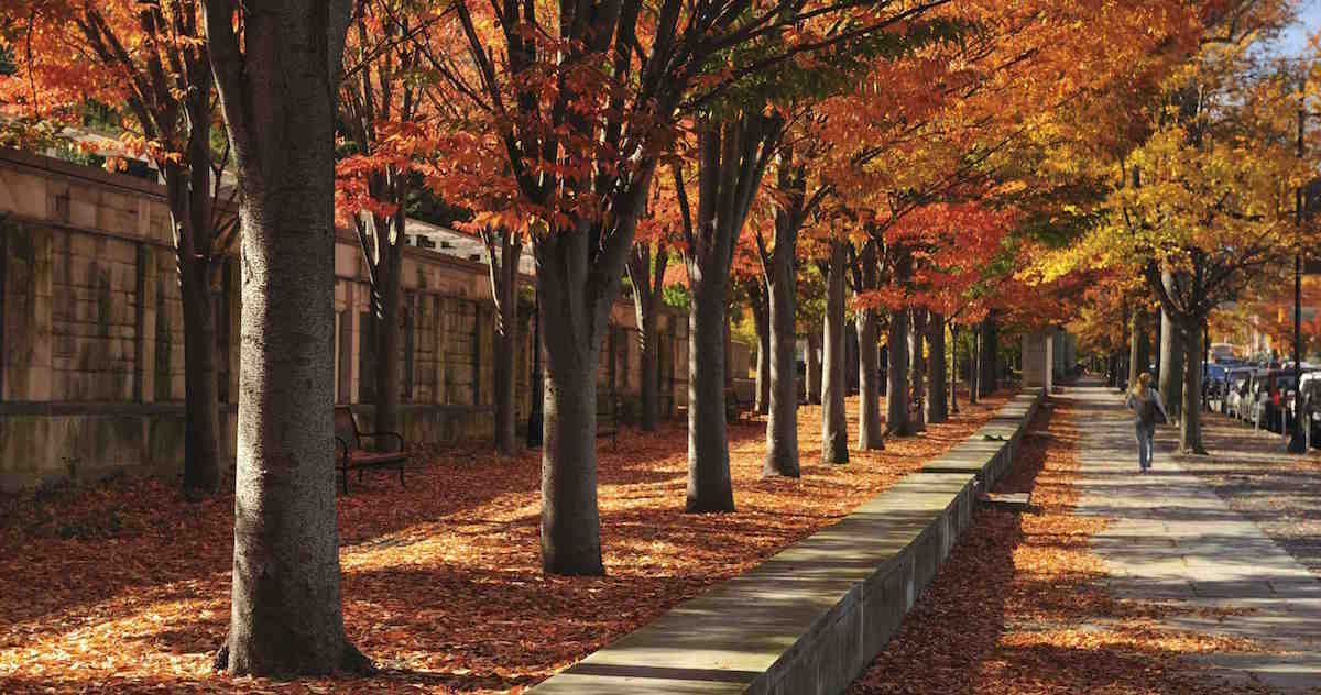 Sidewalk of Nassau Street in town of Princeton, New Jersey
