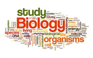 Colorful words related to Biology