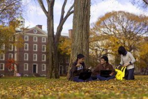 Students lounging in the school grounds.